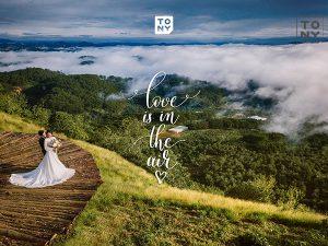 Tổng hợp kinh nghiệm chụp ảnh cưới Đà Lạt